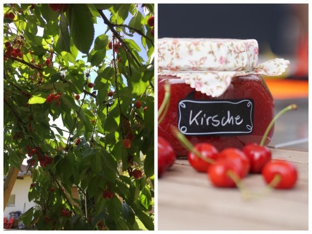 Collage_Fotor Kirschen 2