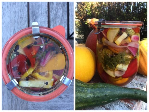 Collage_Fotor Gemüse eingelegt